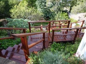 Marin Landscaping